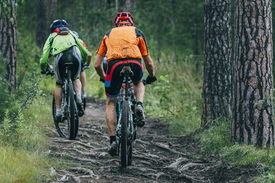 Mountainbike Trail Wald ©123RF