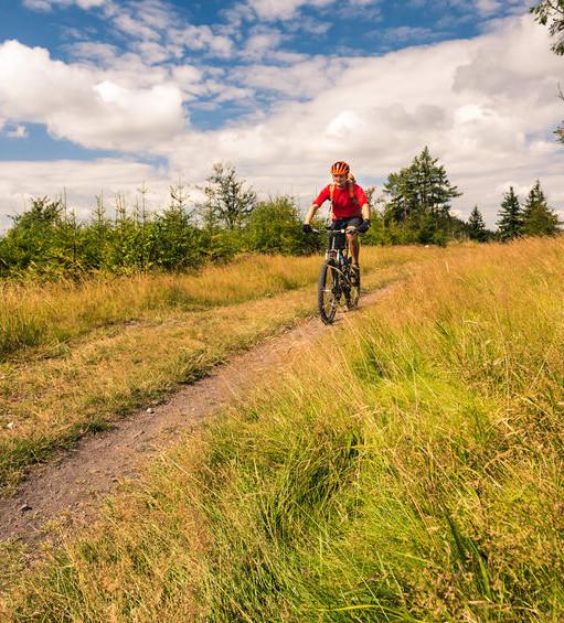 MTB Trail Copyright blasbike / 123rf